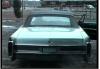 07/05/20 - En voiture, queen Sophie!